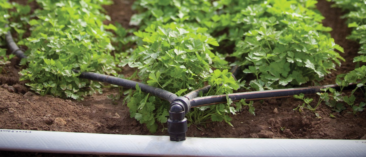 Products and solutions for precision irrigation