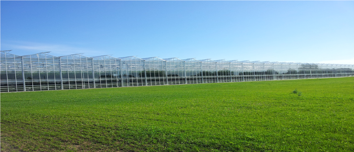 Greenhouse solutions