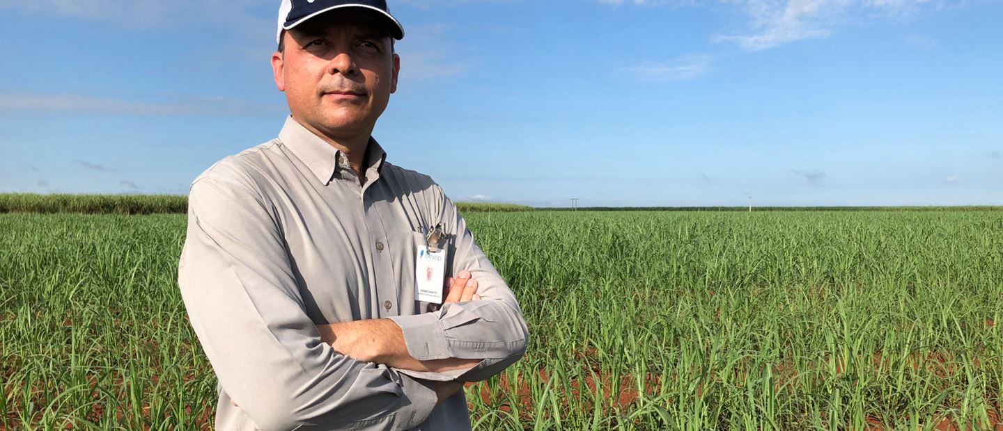 GROWING MORE SUGARCANE WITH FEWER RESOURCES