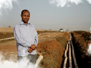 ETHIOPIA: SUGARCANE