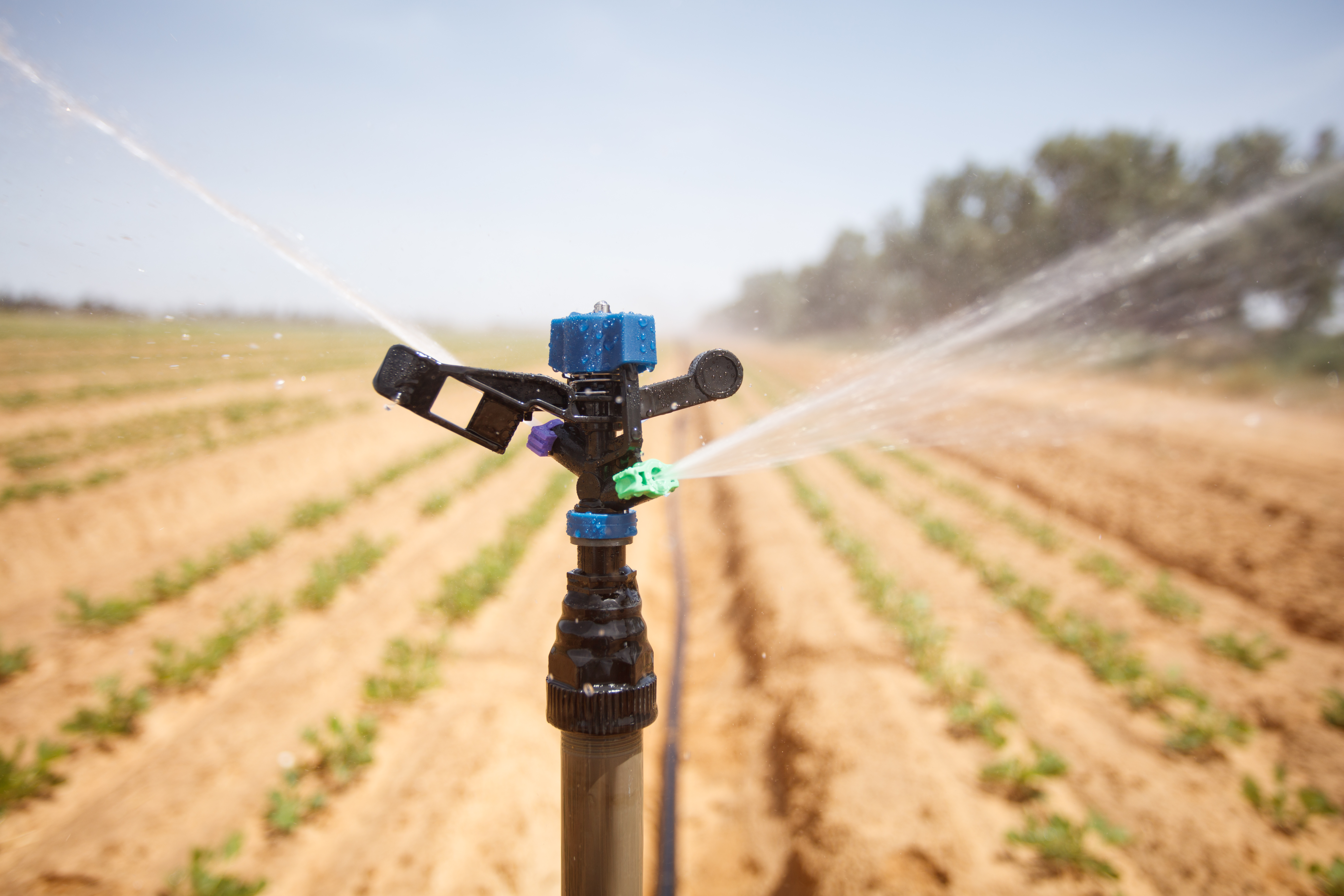 Sprinkler irrigation