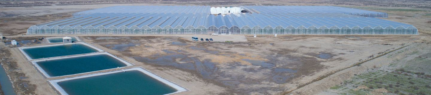 Greenhouse projects | Farming in a controlled environment