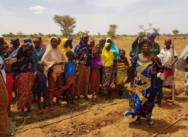 Niger: Fertile Ground for Resilience