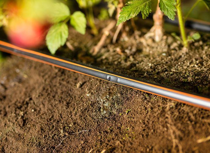 Drip Irrigation Systems Netafim
