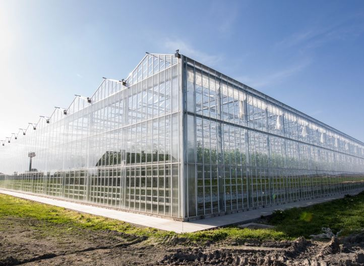 Different greenhouse structures