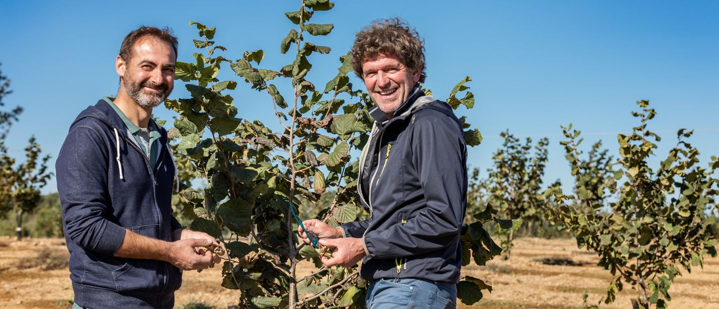 Stefano Forlino decided to increase its yields and improve quality