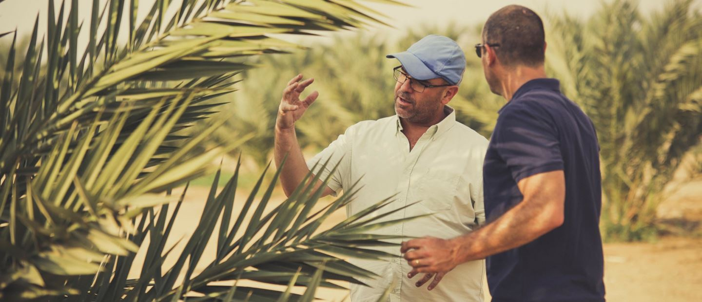 Transforming date palm farming for over 50 years